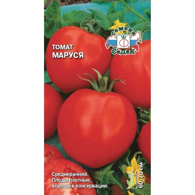 Украшение вашего огорода — сорт томата «маруся»: выращиваем и ухаживаем