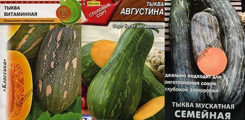 Сорта тыквы с фото и описанием для открытого грунта: какие бывают виды, лучшие разновидности овоща