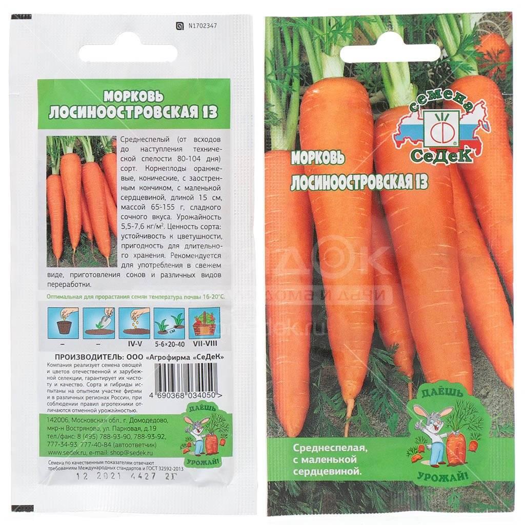 """Морковь """"лосиноостровская 13"""": описание и характеристика сорта, особенности посадки и выращивания, а также сбор урожая, достоинства и недостатки русский фермер"""