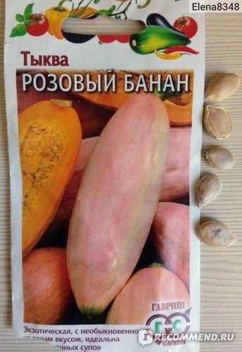Описание и характеристика сорта тыквы розовый банан