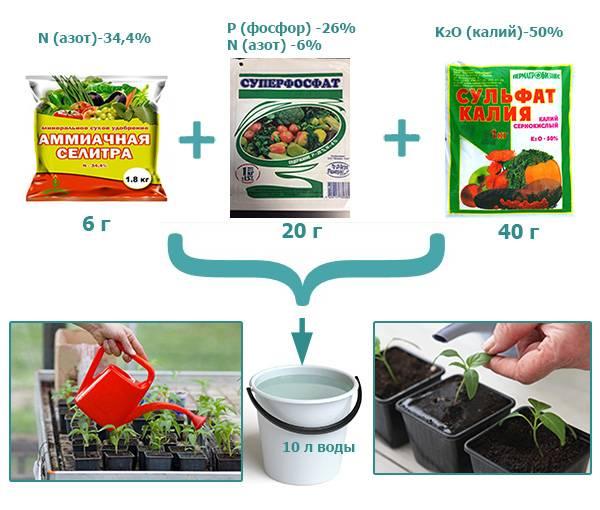 Чем удобрять рассаду перцев: обзор 25 удобрений