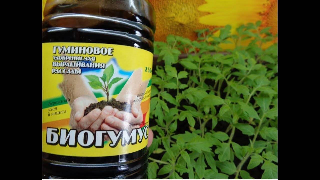 Биогумус жидкий: что это такое и как использовать? инструкция по применению, состав удобрения