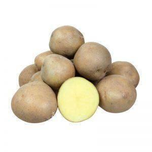 Картофель колобок: характеристика, вкусовые качества, сколько дней будет расти