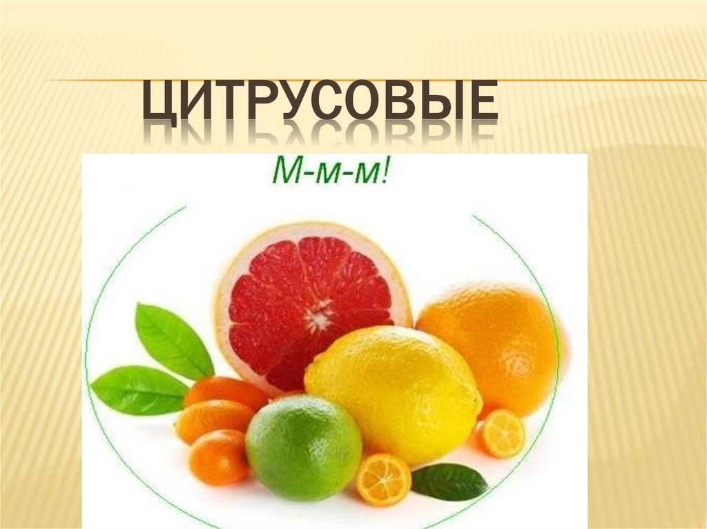 Гибрид лимона и апельсина