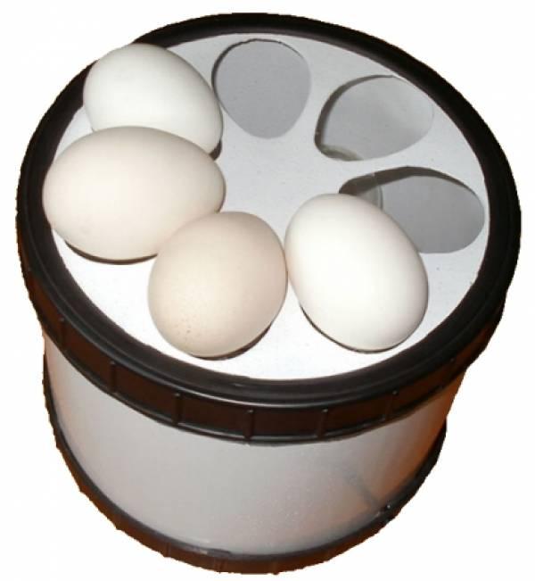 Овоскопирование перепелиных яиц по дням