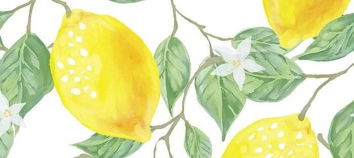 Лимон - кислота или щелочь? 10 способов выровнять ph-баланс организма. - сергей груздев