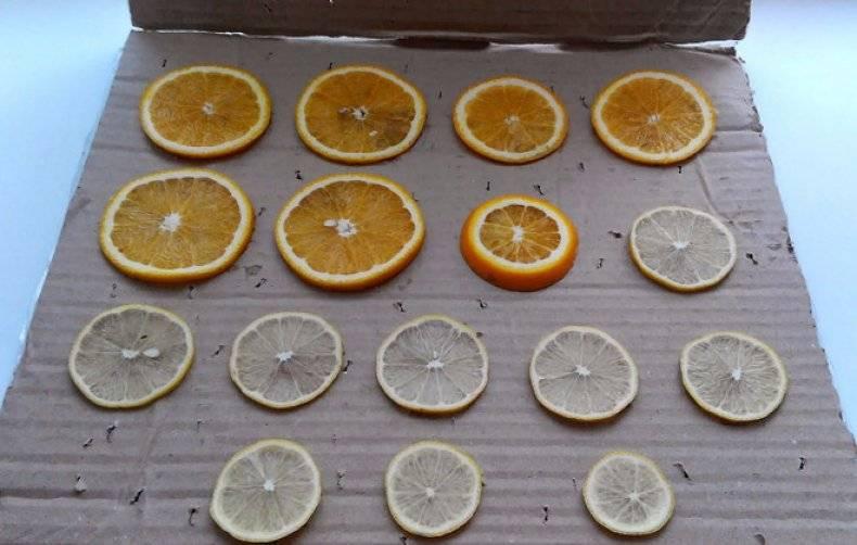 Как апельсин засушить для декора — в духовке, в микроволновке, на батарее, целиком