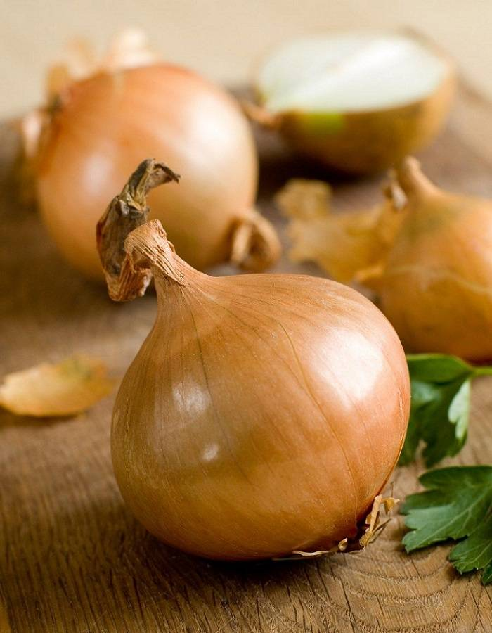 Высокоурожайный гибрид лука с потрясающим вкусом – «центурион»