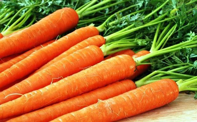 Как сажать морковь в открытый грунт семенами