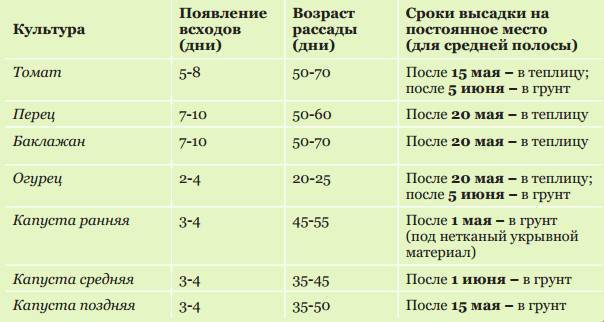 Как выращивать перец на урале: правила и особенности посадки и ухода