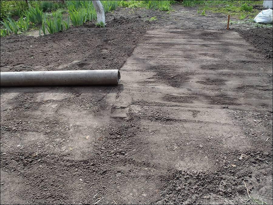Как посадить газон на даче весной: подготовка участка и посев своими руками