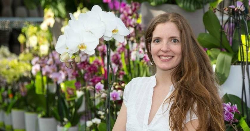 Подкормка орхидеи selo.guru — интернет портал о сельском хозяйстве