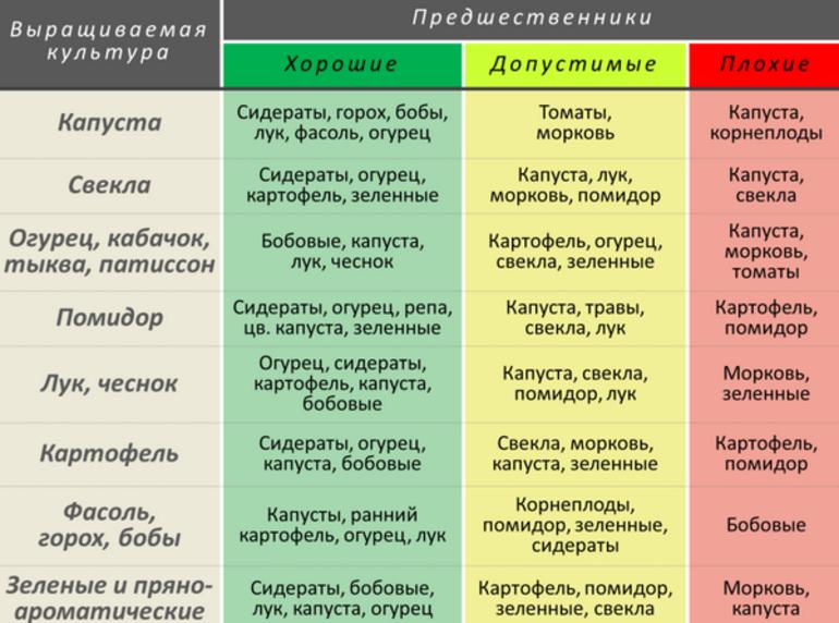 Правильный севооборот, схема севооборота и совместимости с предшественниками