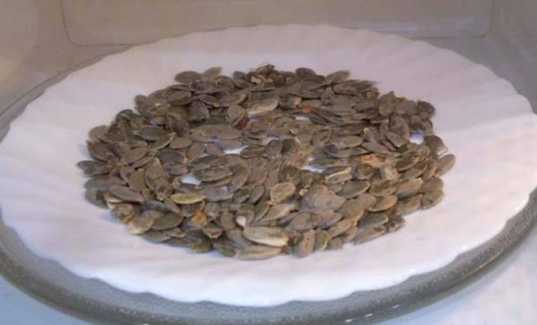 Как правильно сушить семечки из подсолнуха. как сушить семечки из подсолнуха в домашних условиях