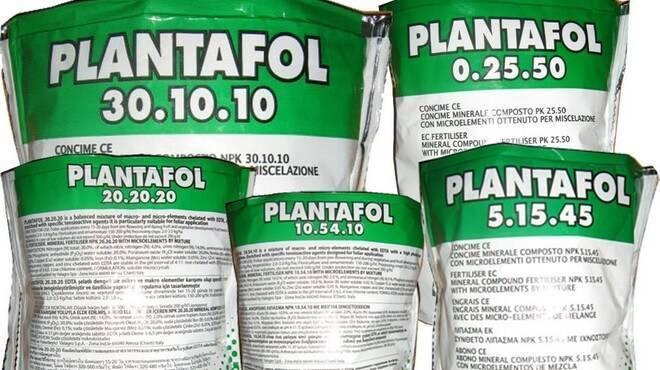 Плантафол - регламент и инструкция по применению