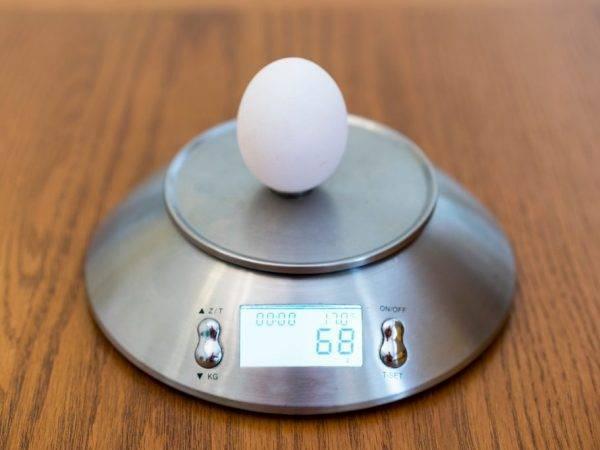 Сколько весит одно куриное яйцо (плюс таблица с категориями яиц)