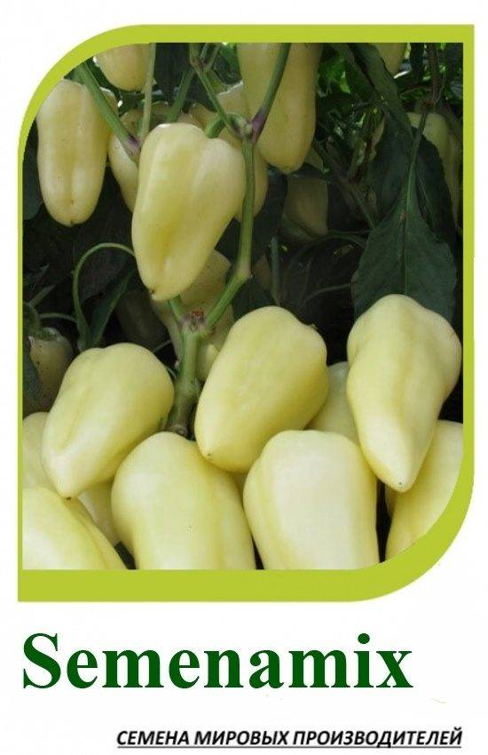 Характеристика салатного перца Хаски ф1