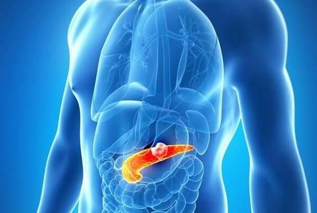 Мед при остром, хроническом панкреатите и обострении: полезен ли и какой можно?