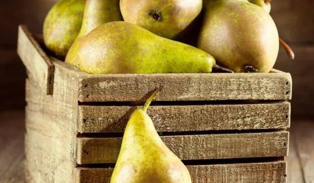 Как ускорить созревание груш: советы для всех сортов