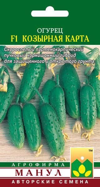 Огурец кузнечик f1: отзывы, фото, описание и характеристика раннего сорта, урожайность, посадка, уход, выращивание гибрида