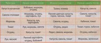 Можно ли сажать после помидоров на следующий год снова томаты, будут ли расти перец, огурцы, капуста, что еще возделывают на той же грядке, таблица севооборота русский фермер