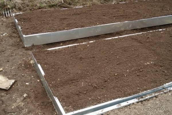 Коровий навоз как удобрение: состав и способы применения в огороде