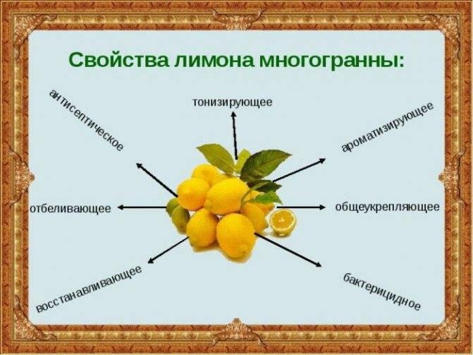 Чистка кишечника соленой водой отзывы врачей | tsitologiya.su
