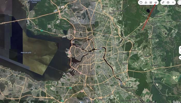 Грибы тверской области 2021: когда и где собирать, сезоны и грибные места