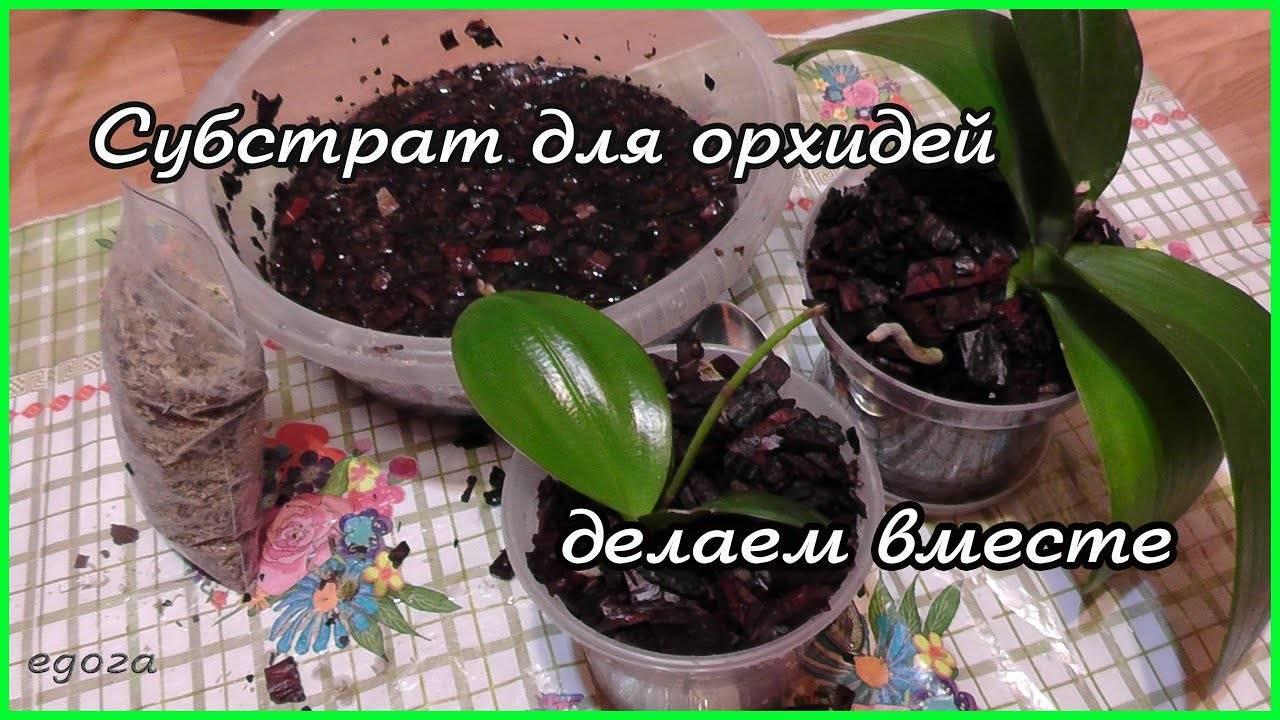 Грунт для орхидей своими руками: правильный состав, как приготовить самим субстрат и сделать землю в домашних условиях