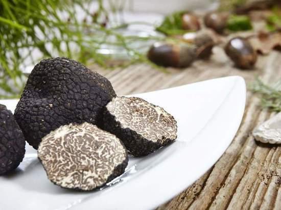 Трюфель гриб: вкус, как выглядит, где растёт, как готовить