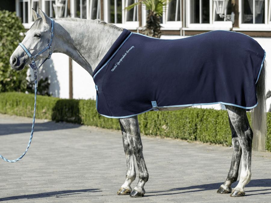 Какие существуют виды попоны для лошадей и зачем они нужны