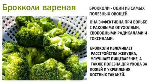 Брокколи - полезные свойства, состав и противопоказания (+ 15 фото)