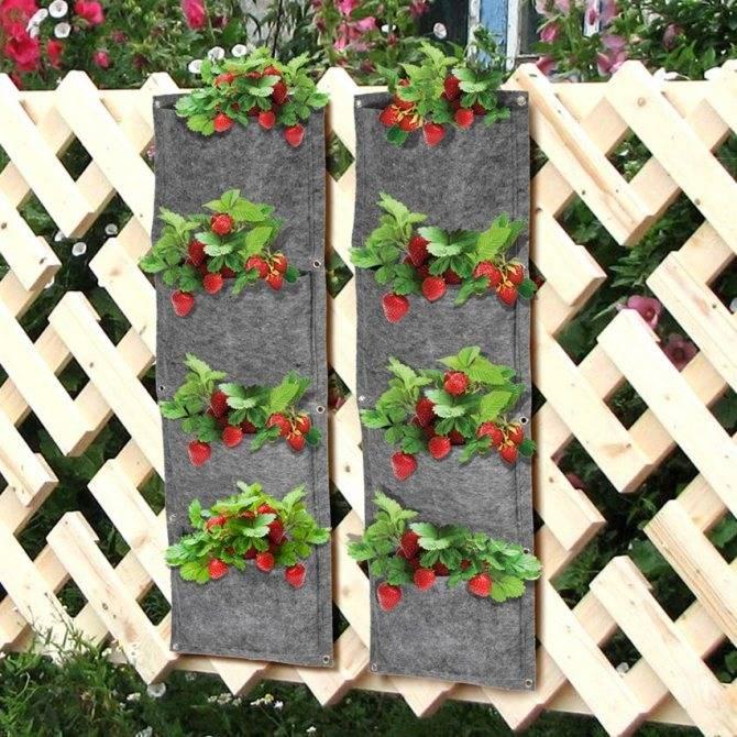 Вертикальная грядка для клубники своими руками: технология и выращивание ягоды, видео и фото