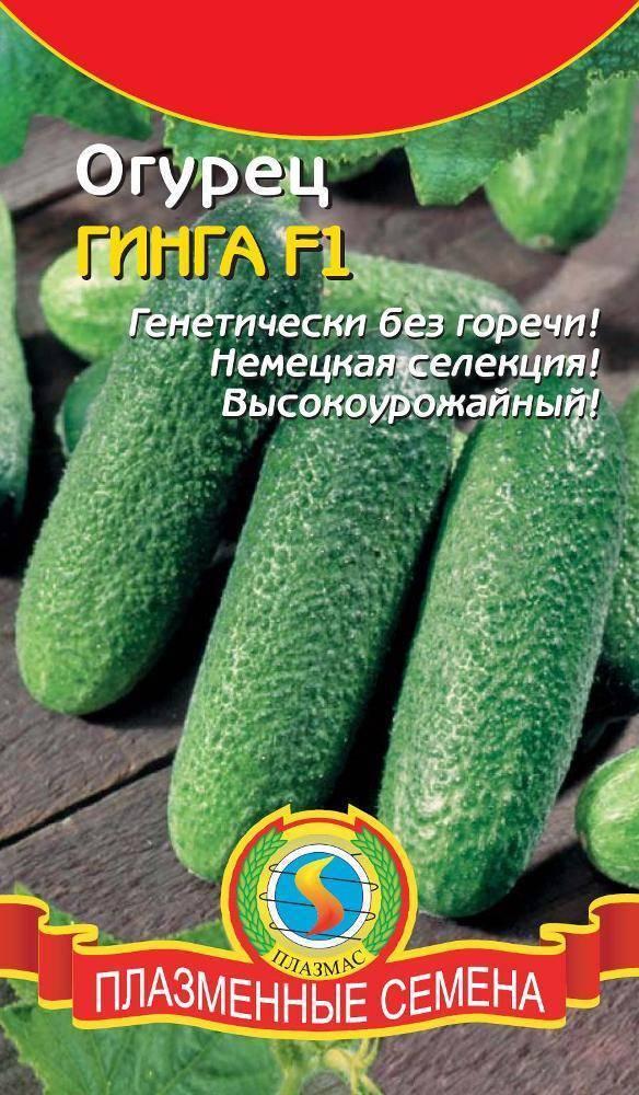Огурец гуннар f1: отзывы, описание сорта, фото