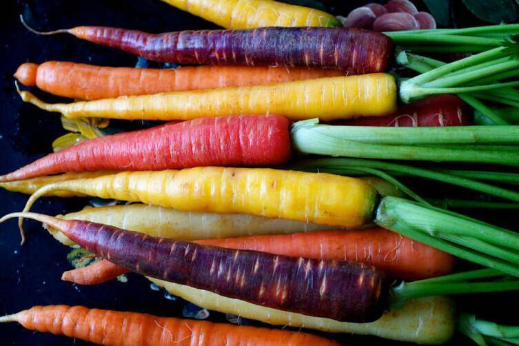 Какой природный краситель придает моркови оранжевый цвет. почему морковка стала оранжевой? | зелёный сад