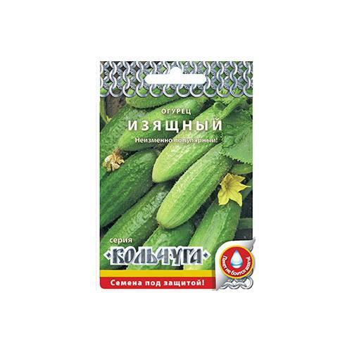 Сорт огурцов изящный: описание, фото, характеристика, отзывы тех, кто сажал, особенности выращивания