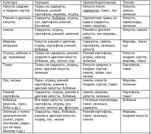 Севооборот на огороде: таблица предшественников культур