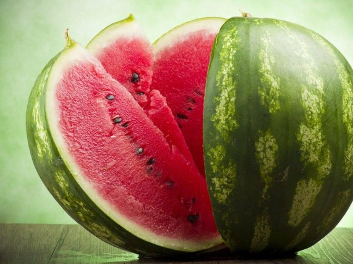 Арбуз холодок: описание сорта, топ секреты выращивания с фото