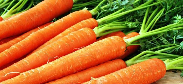 Морковь - польза и вред. 10 полезных свойств овоща