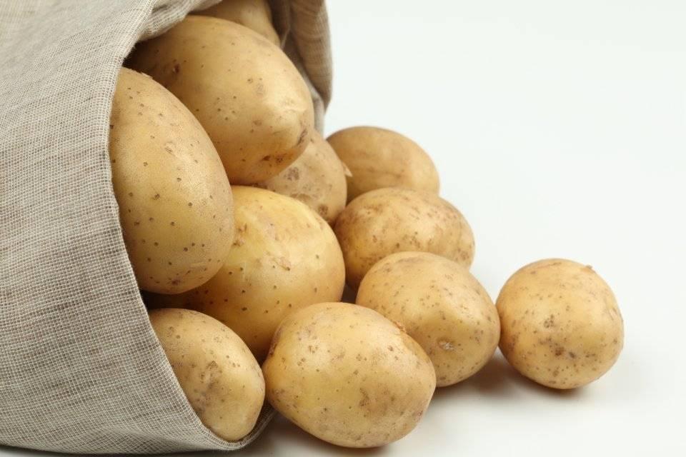Определение химического состава картофеля - агро журнал pole39.ru