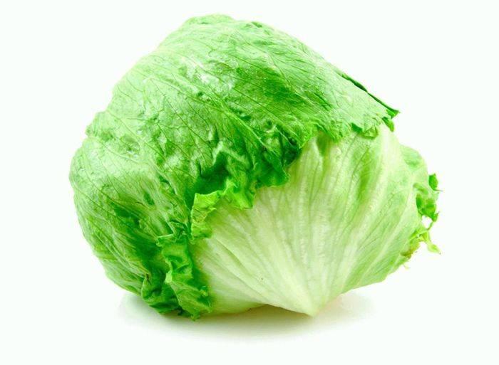 Чем отличается салат айсберг от капусты? | пища это лекарство