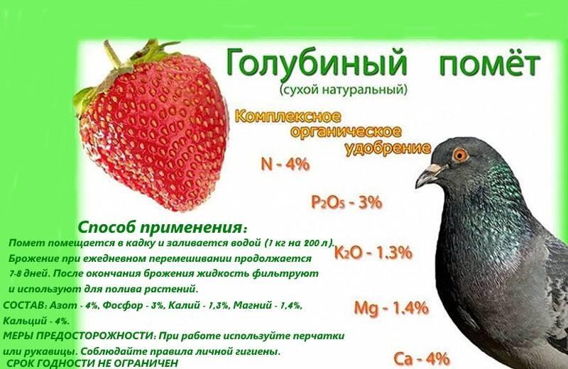 Куриный помет как удобрение: как применять в огороде весной и осенью с пользой для растений?