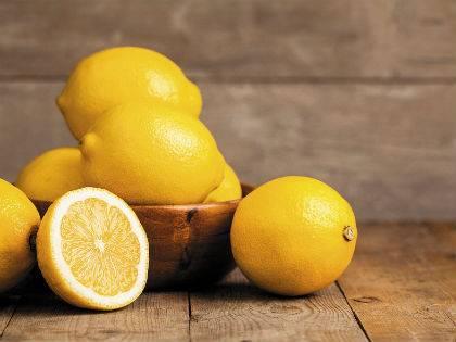 Сорт лимона новозеландский: фото, отзывы, описание, характеристики.