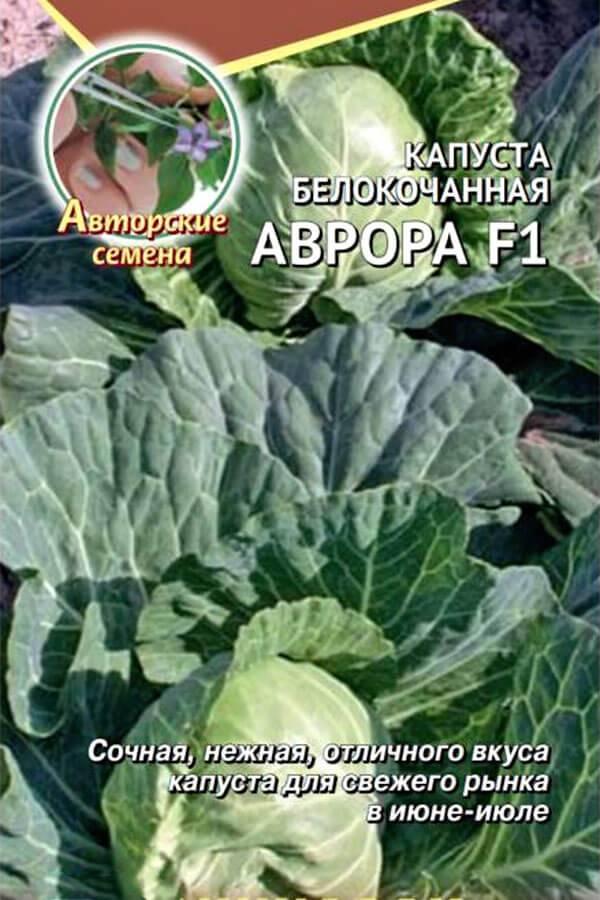 Описание ранних сортов белокочанной капусты