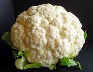 Сорта цветной капусты: лучшие для определенных регионов и гибриды
