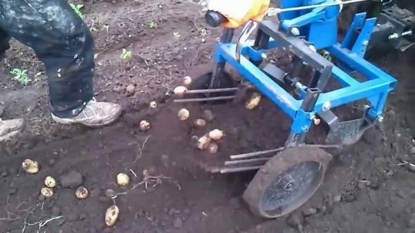 Особенности создания картофелекопалки для мотоблока своими руками