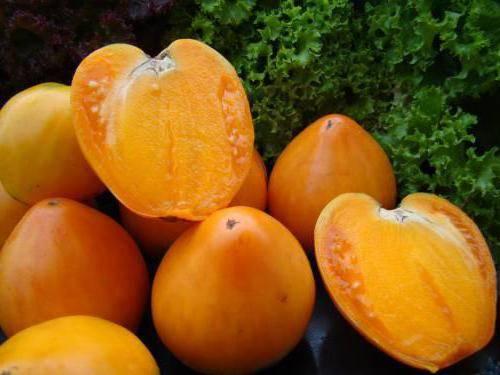 Томат медовый спас: характеристика и описание сорта, преимущества и недостатки перед другими видами помидоров