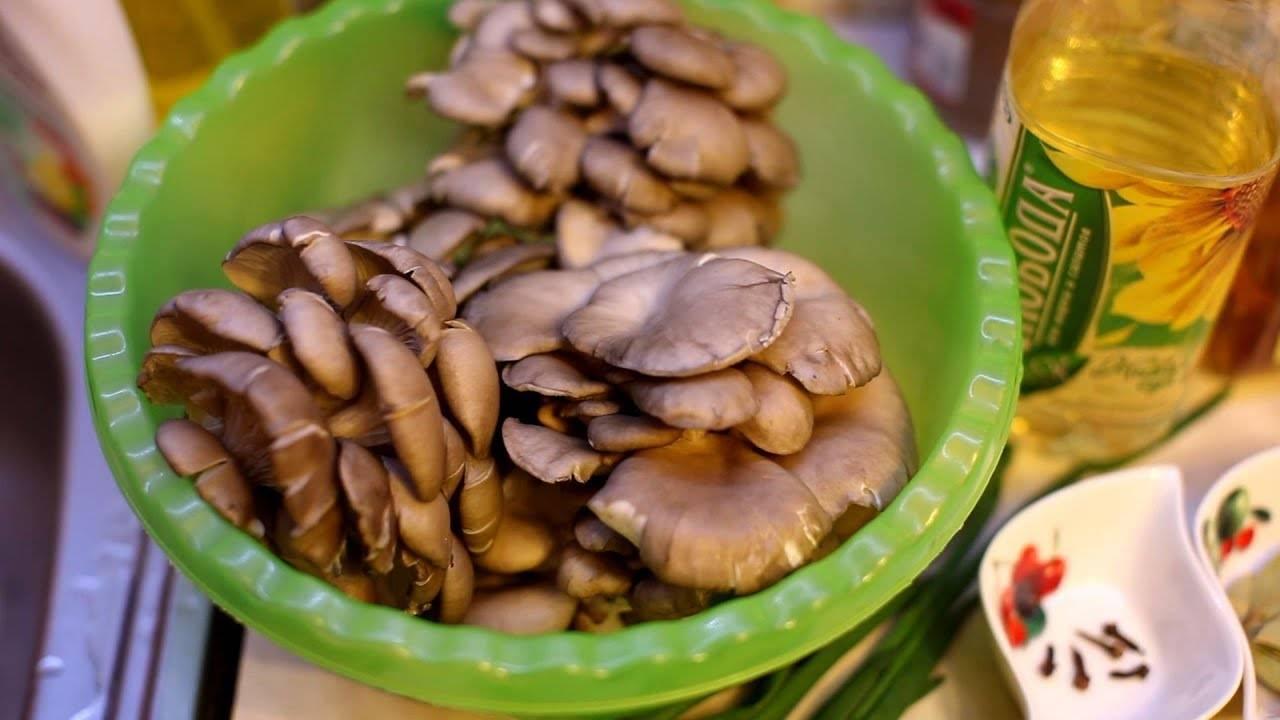Как чистить грибы: белые, вешенки, шампиньоны, маслята, зеленки, опята, валуи, рыжики, лисички, польский