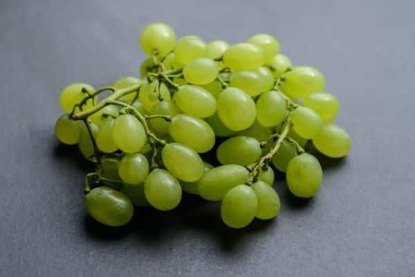 Виноград дарья, селекции крайнова в.н. - описание и фото сорта