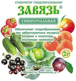 """Что такое """"томатон"""" и как с его помощью стимулировать плодообразование томатов"""